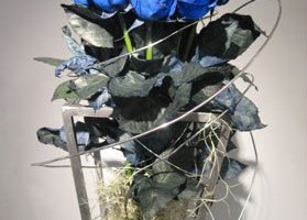 草月展_2008