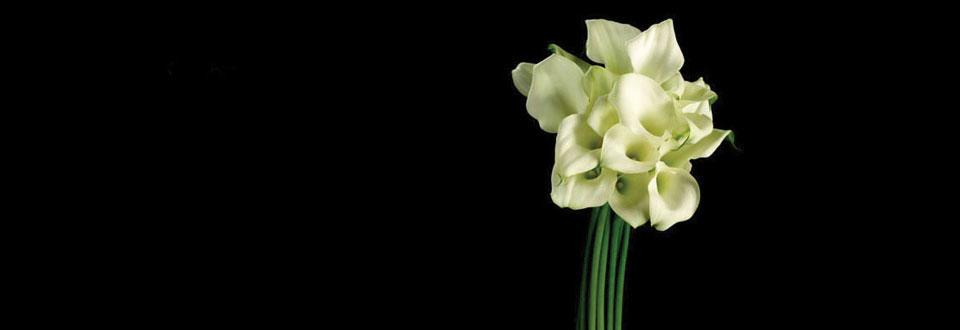switch flower school いけばな 草月流 switchいけばな教室で、自分らしい自由なスタイルの お花を楽しんでみませんか。 いけばな(草月流)とフラワーアレンジメントを同時に学べます。